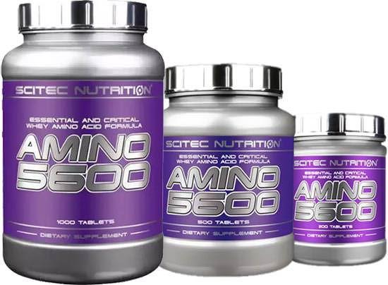 Сывороточный протеин Amino 5600 от Scitec Nutrition