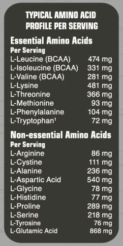 Аминокислотный состав AMINO FUEL 1000